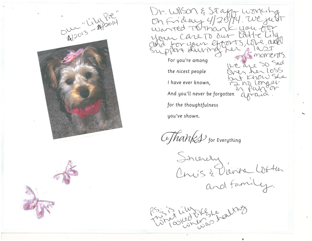 Pet Emergency Services Testimonial