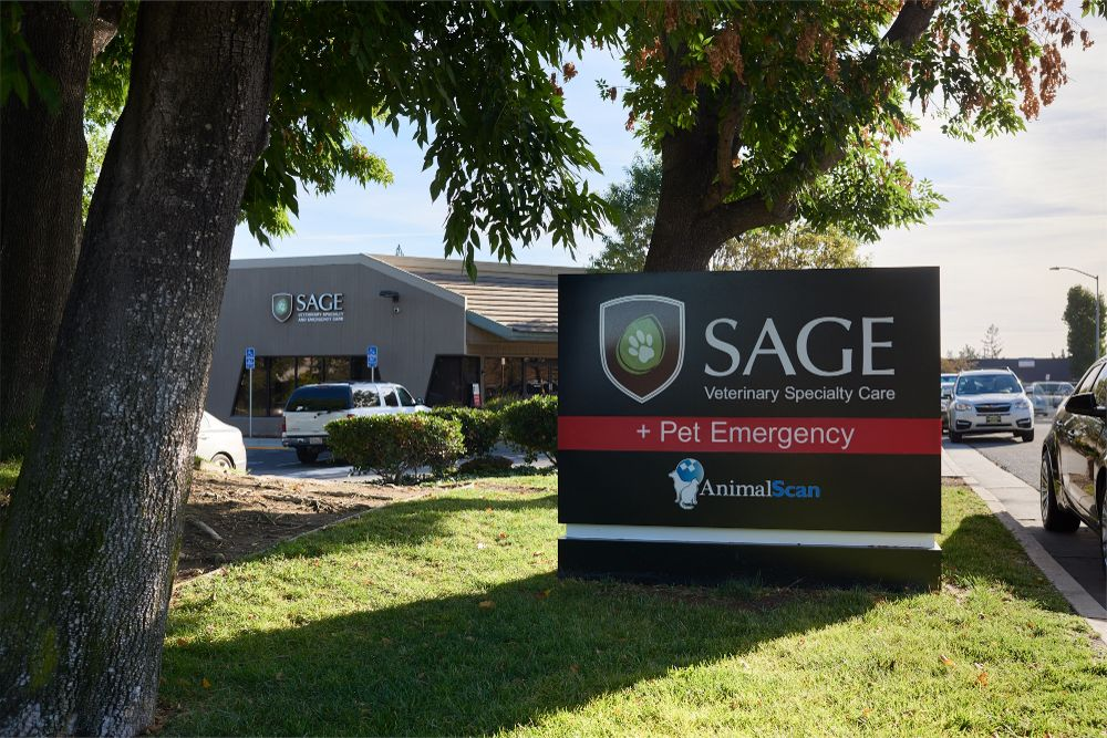 SAGE Campbell Urgent Care NOW Open!
